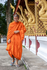 Young Buddhist Monk Walking Next To The Temple