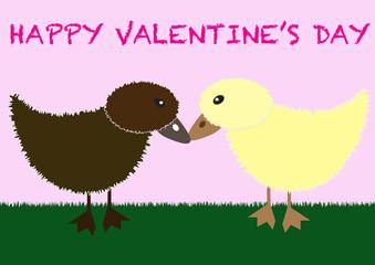 cute duck couple