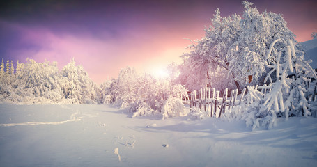 Wall Mural - Beautiful winter sunrise in mountain village.