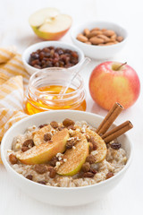 oatmeal with apples, raisins, cinnamon and ingredients on white
