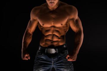 Fitness male torso