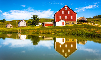 Reflection of house and barn in a small pond, in rural York Coun Wall mural