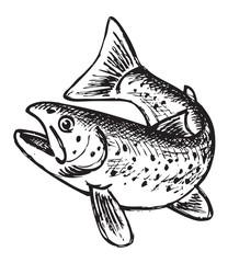 trout pattern
