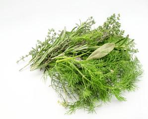 Variety of fresh aromatic herbs