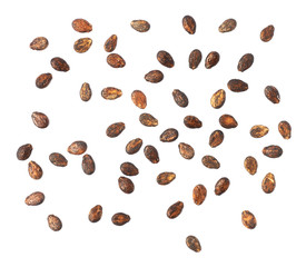 Watermelon seeds isolated
