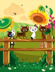 Kittys at summer