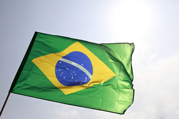 The Brazilian flag