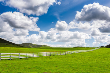 Green Pasture With White Fence Wall mural