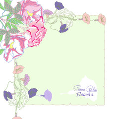 Background with  bindweed and flowers-03