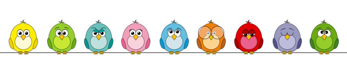 funny birds #2
