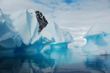 Aluminium Prints Antarctic 氷山