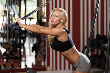 Hot Woman Doing Exercise For Triceps