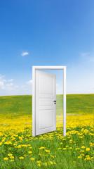 Tür in der Landschaft