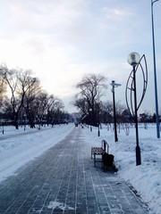 аллея в зимнем парке