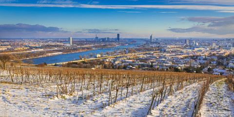 Wintertime in Vienna