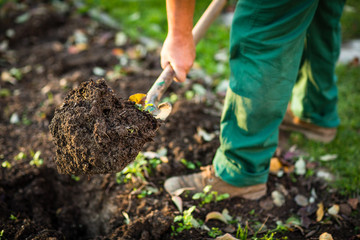 Papiers peints Cappuccino Gardening - man digging the garden soil with a spud