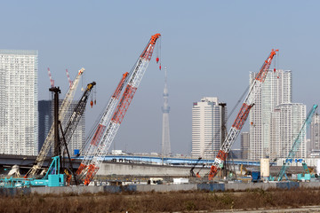 建設ラッシュの臨海副都心有明から望む高層タワーマンションと東京スカイツリー