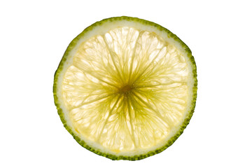lime slice isolated on white background back lighted