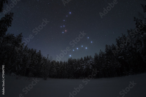 Fototapete Beautiful night winter landscape with the stars