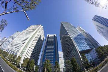 快晴青空 新宿高層ビル群を見上げる
