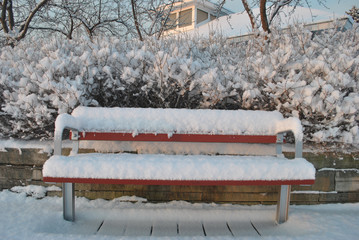 Wooden Bench Covered with Snow in the sunny winter morning