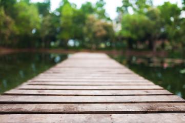 Footbridge in the Park