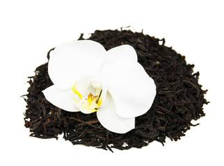 Wall Mural - Black tea with orchid flower