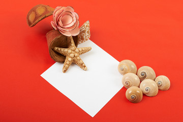 Card with flowers and shells on red background