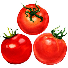Tomato set isolated on white background