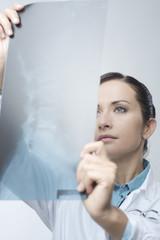 Female radiologist checking x-ray image