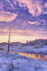 Wall Mural - Winter dawn in the Moscow region. Frost