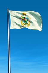 Manaus (Brazil) flag waving on the wind