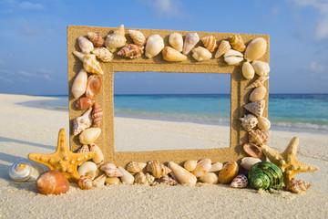 Sea Shell Sand Frame By The Beach