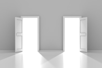 Two doors with copyspace, 3d render