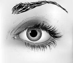 Eye vector illustration