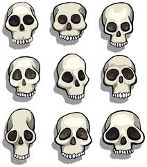 Set of different cartoon skulls