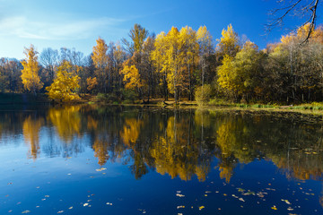 Reflection of fall landscape
