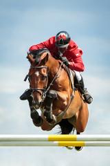 Papiers peints Equitation Equestrian