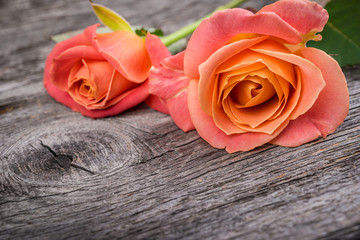 Pink roses on rustic  wooden table, vintage style.