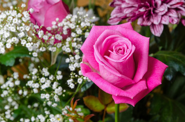 a pink rose in a flower bouquet