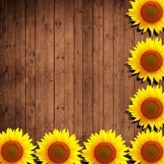 flower sunflower and natural wood background