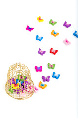 Decorative Cage and Butterflies