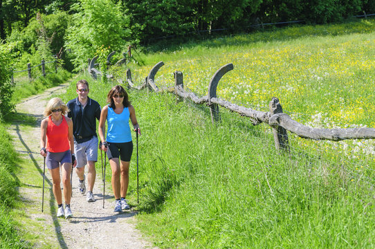 Fit durch Nordic Walking
