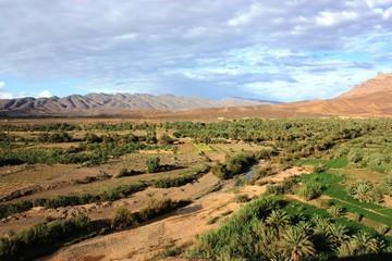 Dattelpalmenoase - Mittleren Atlas - Marokko