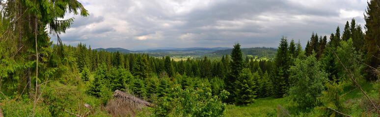 Zawoja - Przełęcz Krowiarki