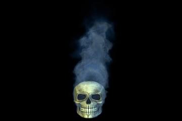 Smoke on the Water, Skull
