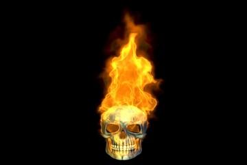 Fire in the Sky, Skull