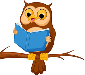 Owl cartoon reading a book