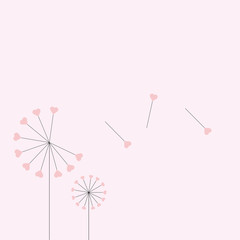 The vector dandelion,vector illustration,heart dandelion,wallpap