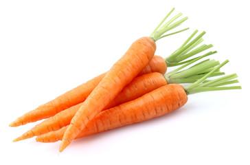 Fototapeta Fresh carrot obraz